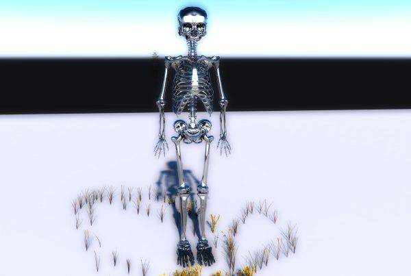 Rigged Skeleton Asset WIP